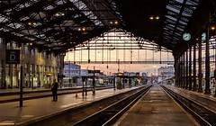 Gare de Lyon Paris France 30th September 2019 (loose_grip_99) Tags: gare de lyon paris france railway railroad rail train station trainshed september 2019 sunlight light sunrise