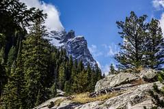 DSC01996-2 (photorandy2011) Tags: grandtetons wyoming mountains jennylake