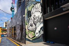 end of the lane (monkeyc.net) Tags: brisbane monday exploration westend grafitti street streetart walls signs murals eos m50 mirrorless stickers