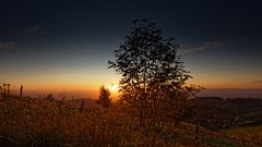 Autumn sunset at Feldberg in the Black Forest (SaBi BeK) Tags: schwarzwald black forest sunset sonnenuntergang herbst canon 5dsr germany deutschland feldberg autumn landschaft landscape natur nature field feld horizont horizon clouds farbig colored line linie rural ländlich color farbe blue blau yellow gelb canola vivid lebhaft blume himmel