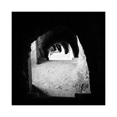 Down the Catacombs (Thomas Listl) Tags: thomaslistl blackandwhite biancoenegro noiretblanc monochrome square nomansland av af citadelledesisteron sisteron stairs staircase contrast arch catacomb mood mysterious dark