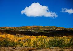 Bald Mountain Cloud (klauslang99) Tags: klauslang nature naturalworld northamerica utah bald mountain cloud fall sky forest woods landscape