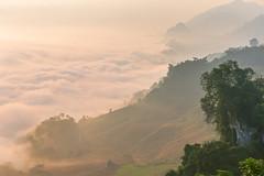 _Y2U4462-66.0919.Bản Dọi.Tân Lập.Mộc Châu (hoanglongphoto) Tags: asia asian vietnam northvietnam northernvietnam northwestvietnam landscape scenery vietnamlandscape vietnamscenery mocchaulandscape morning clouds valley mist mountain flanksmountain hdr earlyfrost earlymorningfog canon canoneos1dx canonef70200mmf28lisiiusm morningdew tâybắc sơnlamộcchâu tânlậpbảndọi phongcảnh phongcảnhmộcchâu mâymộcchâu thunglũngmâymộcchâu mây buổisáng sươngmù sươngsớm núi sườnnúi cloudvalley theforest rừng nature thiênnhiên thiênnhiênmộcchâu