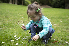 picking daisies (louisa_catlover) Tags: maranoa maranoagardens balwyn melbourne victoria australia spring september outdoor garden nature portrait family child daughter tabby tabitha