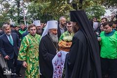 008. Прп. Кукши Одесского 29.09.2019