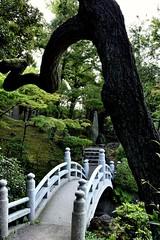 Archs (Abhay Parvate) Tags: kyuyasudagarden 旧安田庭園 庭園 japanese garden nature bridge