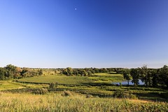 view from a glacial hill (Yuki (8-ballmabelleamie)) Tags: glacialpark scenery scenic landscape view vista outdoor nature prairie grassland field land sky evening afternoon mchenrycounty moon marsh wetland sidelight canoneos6dmarkii illinois midwest