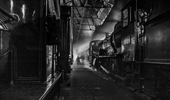 Amongst Giants - The Wider Picture (photofitzp) Tags: didcot timelineevents railways reenactor blackandwhite gwr photocharter atmosphere lighting locomotives heavymetal