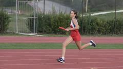 Sonia Gattari