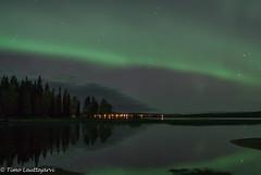 First this season (timo.lauttajarvi) Tags: landscape laplandfinland lapland finland northernlights aurora auroraborealis autumncolour visitlapland