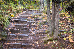 steps of stone (jimmy_racoon) Tags: 70200 f4l is canon 5d mk2 cascade river state park north shore 2019 minnesota nature stairsway steps stone woods 70200f4lis canon5dmk2 cascaderiverstatepark northshore