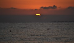 Sunrise on the beach of El Campello (En memoria de Zarpazos, mi valiente y mimoso tigre) Tags: sunrise amanecer alba beach playa spiaggia sol sun sole mar mare sea seascape skyfire skyscape skyred clouds campello alicante