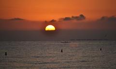 Sunrise on the beach of El Campello (En memoria de Zarpazos, mi valiente y mimoso tigre) Tags: amanecer alba beach playa spiaggia sol sun sole mar mare sea seascape skyfire skyscape skyred clouds campello alicante