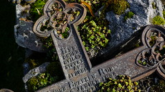 Final resting place (Trond Lepperød) Tags: cross restingplace cemetery death