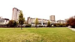 hnv | skyline (stoha) Tags: hannover niedersachsen brutalismus deutschland germany germania siedlung ihmeufer