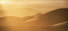 THE GREAT SAND DUNES, COLORADO (WilsonAxpe) Tags: thegreatsanddunes dunes sunset gold colorado