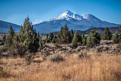 Mount Shasta (helenehoffman) Tags: activevolcano california snowcapped landscape siskiyoucounty cascaderange evergreens mtshasta volcano mountshasta mountain coth coth5 sunrays5