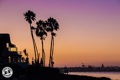 San Diego Sunset.. (Lauren Tucker Photography) Tags: landscape nightime sandiego sun sunset view canon slr camera markii 7d 18300mm sigma copyright ©laurentuckerphotography photography photographer photograph photo image pic picture allrightsreserved 2019 colour wild wildlife nature mammal bird closeup summer usa us america unitedstates holiday travel