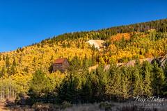 September 26, 2019 - Fall colors near Breckenridge. (Tony's Takes)