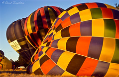 049 Hot Air balloons (Awesome Image Maker NZ) Tags: canonslidebestof event flickr hotairballoon marlborough slides sport frost sunrise