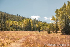 September 29, 2019 - A gorgeous fall scene on Squaw Pass. (Richard Lyddon III)