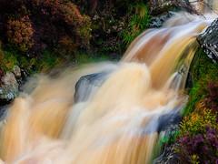 Stream Sept 2019 (kckelleher11) Tags: 2019 40150mm ireland olympus september em1 f28 flowing mzuiko omd stream water wicklow