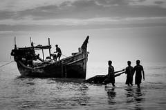 life of sea (A t i k R a h m a n) Tags: lifeofsea people peopleofkutubdia photographybyatikrahman bangladesh lifestyle