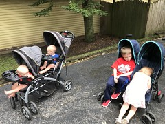 "The Kids in Strollers Heading to Last Fling • <a style=""font-size:0.8em;"" href=""http://www.flickr.com/photos/109120354@N07/48823068333/"" target=""_blank"">View on Flickr</a>"