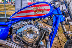 Harley (Tony Howsham) Tags: harley davidson usa red white blue motorcycle henham steam rally suffolk canon eos 70d 1018 efs is stm