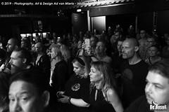 2019 Bosuil-Het publiek bij Kris Barras Band 6-ZW