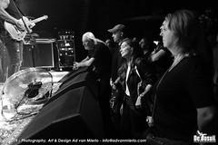 2019 Bosuil-Het publiek bij Kris Barras Band 5-ZW