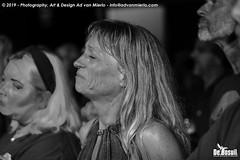 2019 Bosuil-Het publiek bij Kris Barras Band 16-ZW