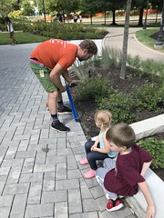 "Family Paver Installation • <a style=""font-size:0.8em;"" href=""http://www.flickr.com/photos/109120354@N07/48823398656/"" target=""_blank"">View on Flickr</a>"