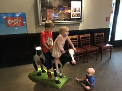 "Riding the Cow at Colonial Cafe • <a style=""font-size:0.8em;"" href=""http://www.flickr.com/photos/109120354@N07/48823428751/"" target=""_blank"">View on Flickr</a>"
