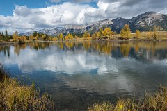 Autumn burning brightly (Tracey Rennie) Tags: canmore alberta fall autumn lake mountains rockies reflections quarrylake clouds 52weekchallenge