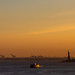 Amber Waves of New York