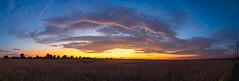 Dramatic Rural Illinois Skies (mjhedge) Tags: sunset illinois centralillinois rural farm soybeans clouds orange getolympus oly olympus omd omdem1mkii omdem1ii omdem1markii 1240mm 1240mmf28 1240mmf28pro olympusm1240mmf28 panorama pano wideangle