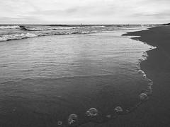Bubbles (mswan777) Tags: beach shore coast seascape water waves bubbles sand sky horizon scenic apple iphone iphoneography mobile st joseph michigan monochrome ansel black white nature reflection wet