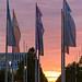Verschiedenfarbige Bits&Pretzels Fahnen wehen im Wind mit Sonnenuntergang im Hintergrund