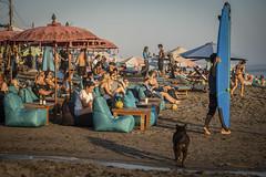 Canggu (michaels.jeff) Tags: bali canggu indonesia a7r3 beach picoftheday sony sonyalfa