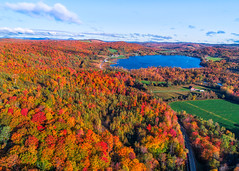 Sunbathed (abhijitcpatilphotography) Tags: fall foliage trees autumn aerial birdseyeview drone landscape morning goldenhour fall2019 sunrise sunlight sun mountains