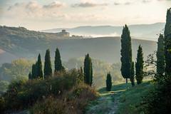Toskanamorgen (Pixelkids) Tags: morgenstimmung toskana italien zypressen landschaft explored nature explored196