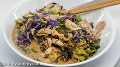 Leftover sous vide chicken with cabbage and kale and laksa flavours (garydlum) Tags: cabbage chicken coriander kale redonion springonions canberra australiancapitalterritory australia