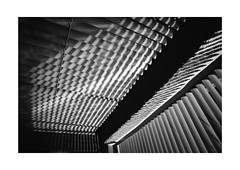 Concentrated Stripes (Thomas Listl) Tags: thomaslistl blackandwhite biancoenegro noiretblanc monochrome indoor 24mm wideangle stripes lines diagonal geometry geometric graphical veranda jalousie curtain light shadow lightandshadow contrasts nomansland véranda av af mood dark angle windows