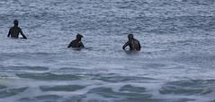 img_2138-copia_27837264729_o (yonquidelasal2018) Tags: yonqui de la sal sopelana surf 09012018