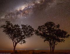 milky way (andrew.walker28) Tags: galactic centre starlight stars night sky milky way long exposure astrophotography