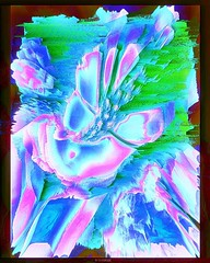 Fleur du mal . . . . . #graphicdesign #graphicdesigner #graphicartist #surreal #surrealart #abstraction #abstract_art #abstract_post #dark_macro_art #abstract_buff #abstractors #abstractmag #darkaesthetic #colors #neonart #silhouette #glitchr #glitchy #gl (dreamside.xiii) Tags: glitch generative abstract surreal grunge model cyberpunk digital art vaporwave aesthetic new media mixed