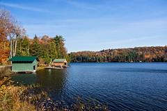 Meech Lake, Gatineau Park, Ottawa. (womboyne7) Tags: lake water autumn fall trees colour gold red green yellow blue recreation pentax
