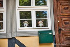 DSC02530.jpeg -  Quedlinburg (HerryB) Tags: quedlinburg deutschland allemagne germany europa europe 2019 sony alpha 99ii 77v tamron bechen heribert heribertbechen fotos photos fotografie photography sachsenanhalt bode