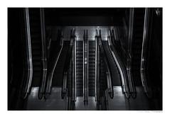 Rotterdam 5104 (Der Zeit die Augenblicke stehlen) Tags: hth urban rolltreppen treppen stairway sw bw monochrome schwarzweiss blackandwhite stadt city rotterdam maas hafenstadt containerhafen europa architektur escalator markthalle niederlande holland südholland netherlands